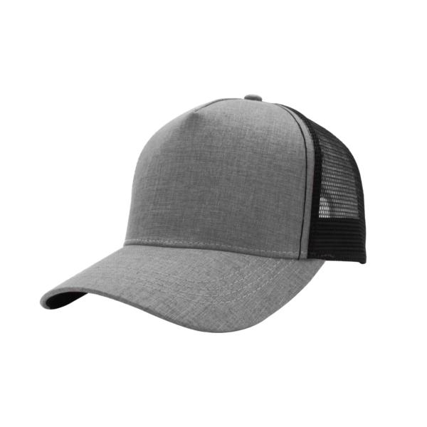 TwentyFour Store F21501-5 Panel heather grey Cap